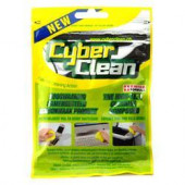 Cyberclean Home Pose